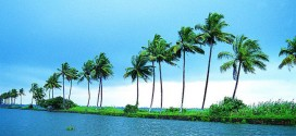 Kumarakom – Beautiful Backwaters in Kerala